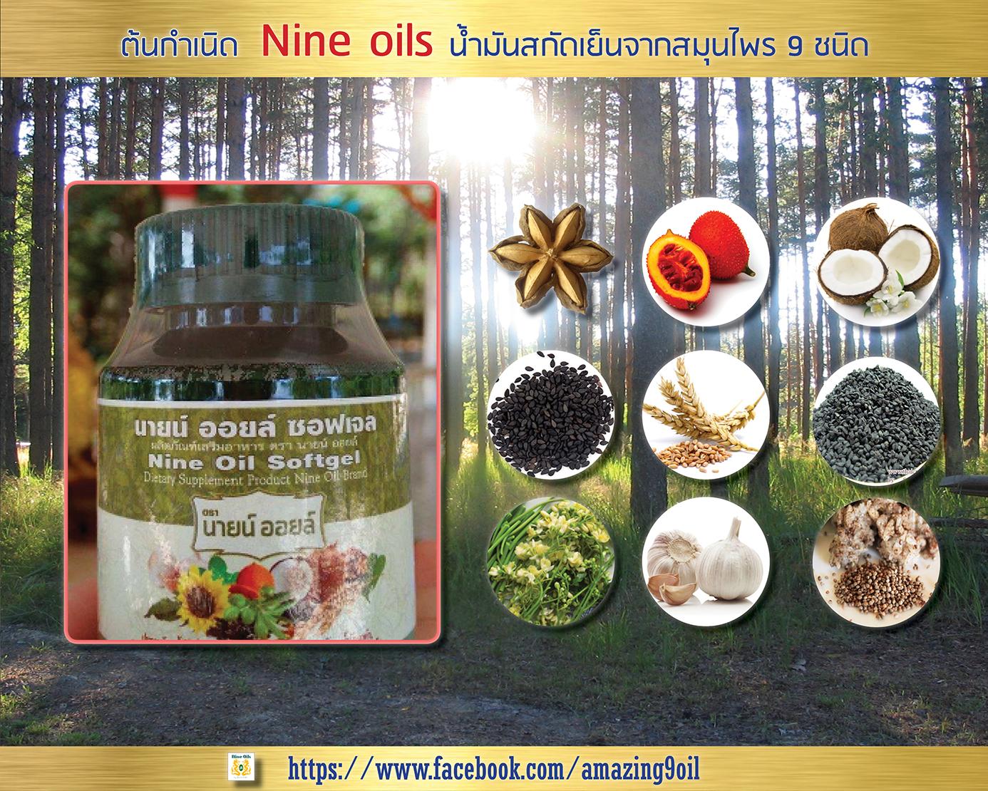 Amazing Nine-Oils (ต้นกำเนิด Nine-Oils)