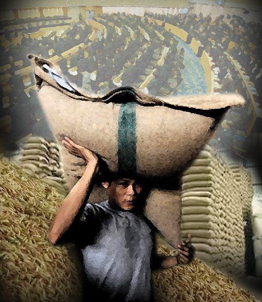 คมดาบซากุระ 2 : จำนำข้าวเปลี่ยนประเทศไทย โดย ชวินทร์ ลีนะบรรจง และ สุวินัย ภรณวลัย (5 ธันวาคม 2555)