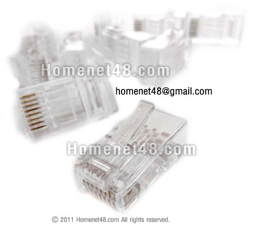 RJ45 Plug for Ethernet cable CAT6 connecting to LAN