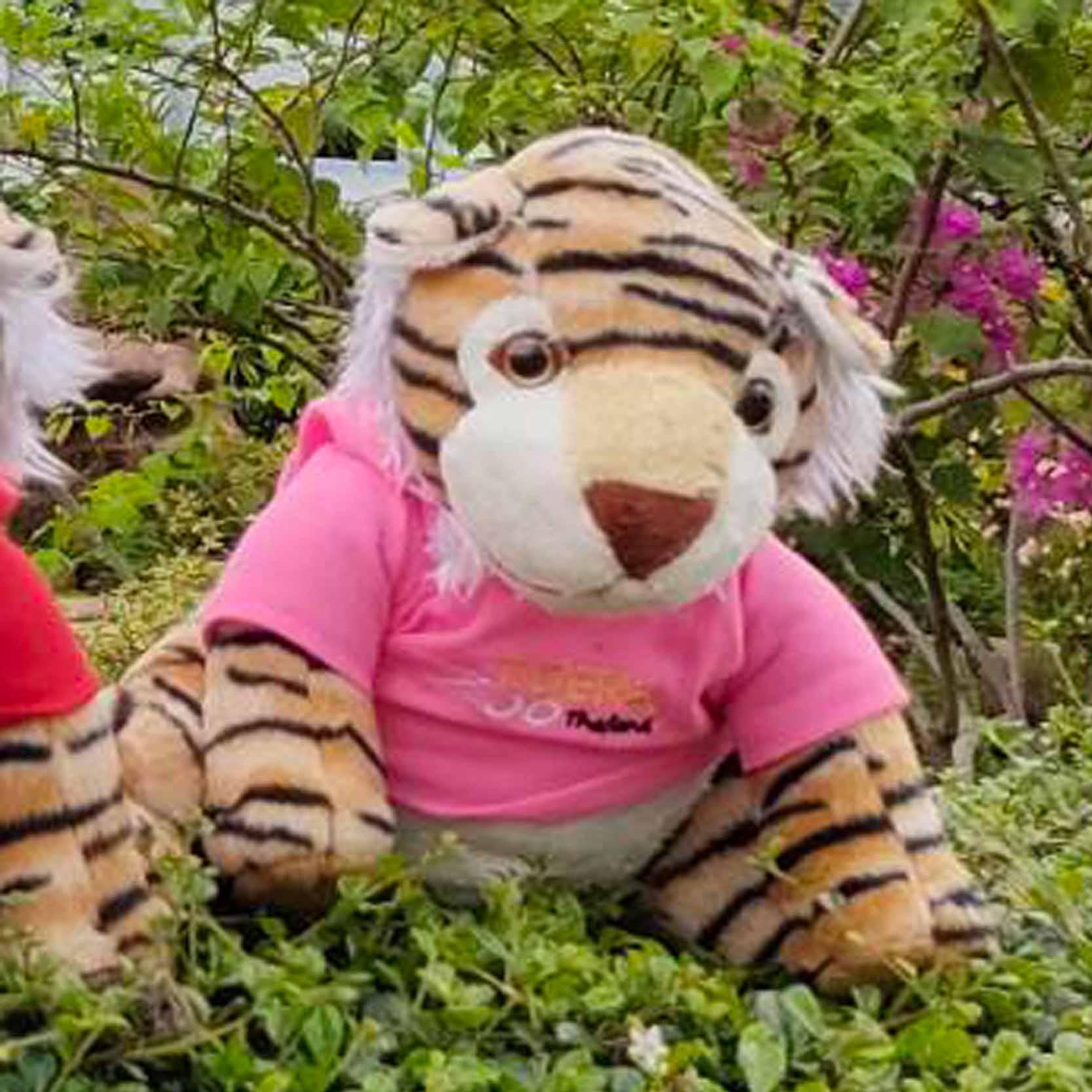 ตุ๊กตาเสือช่วยค่าอาหารสัตว์น้องไซส์ M สีชมพู