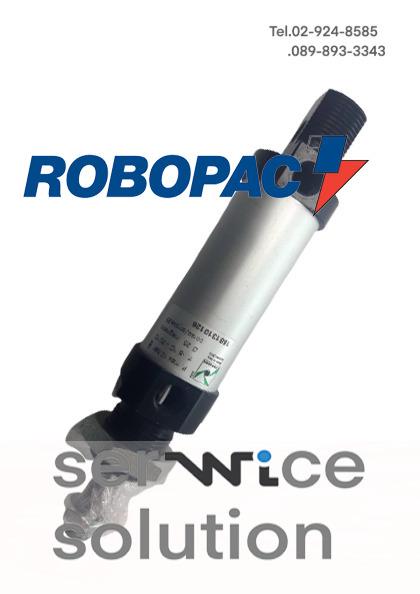 PNEUMATIC CYLINDER 25 25 S10 DE 1260.25 [ROBOPAC-1881310126]