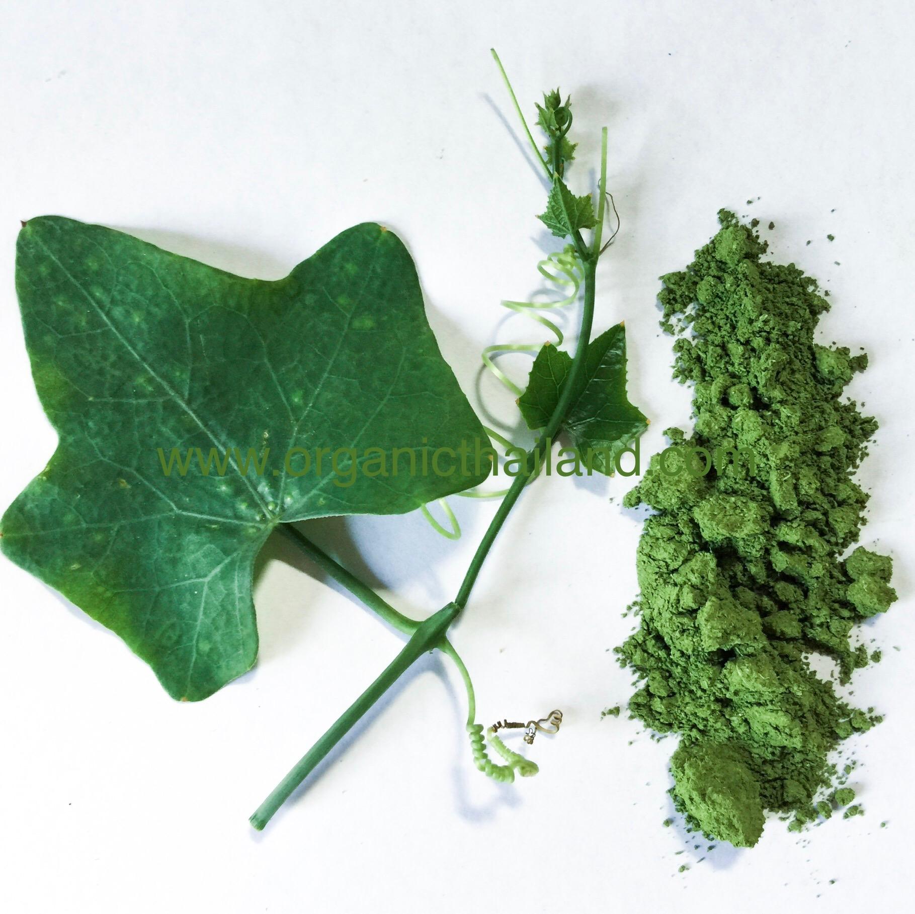 Ivy Gourd Powder 1kg