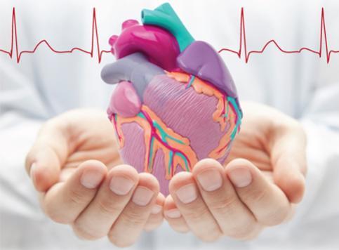 โรคหลอดเลือดหัวใจตีบตัน