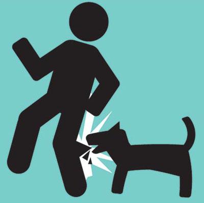 วิธีปฐมพยาบาลเมื่อถูกสุนัขกัดหรือแมวข่วน