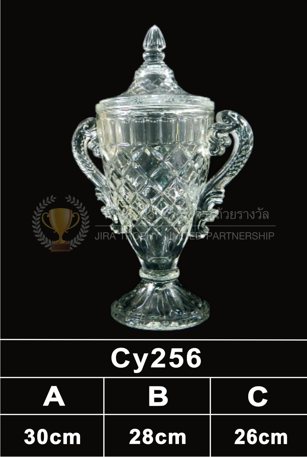 ถ้วยรางวัลคริสตัล CY256