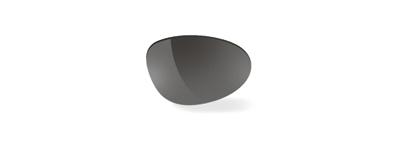 Synform Smoke Black Lens