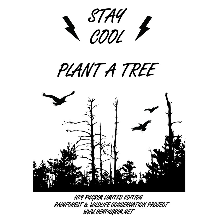 STAY COOL , PLANT A TREE ,RAINFOREST & WILDLIFE CONSERVATION PROJECT