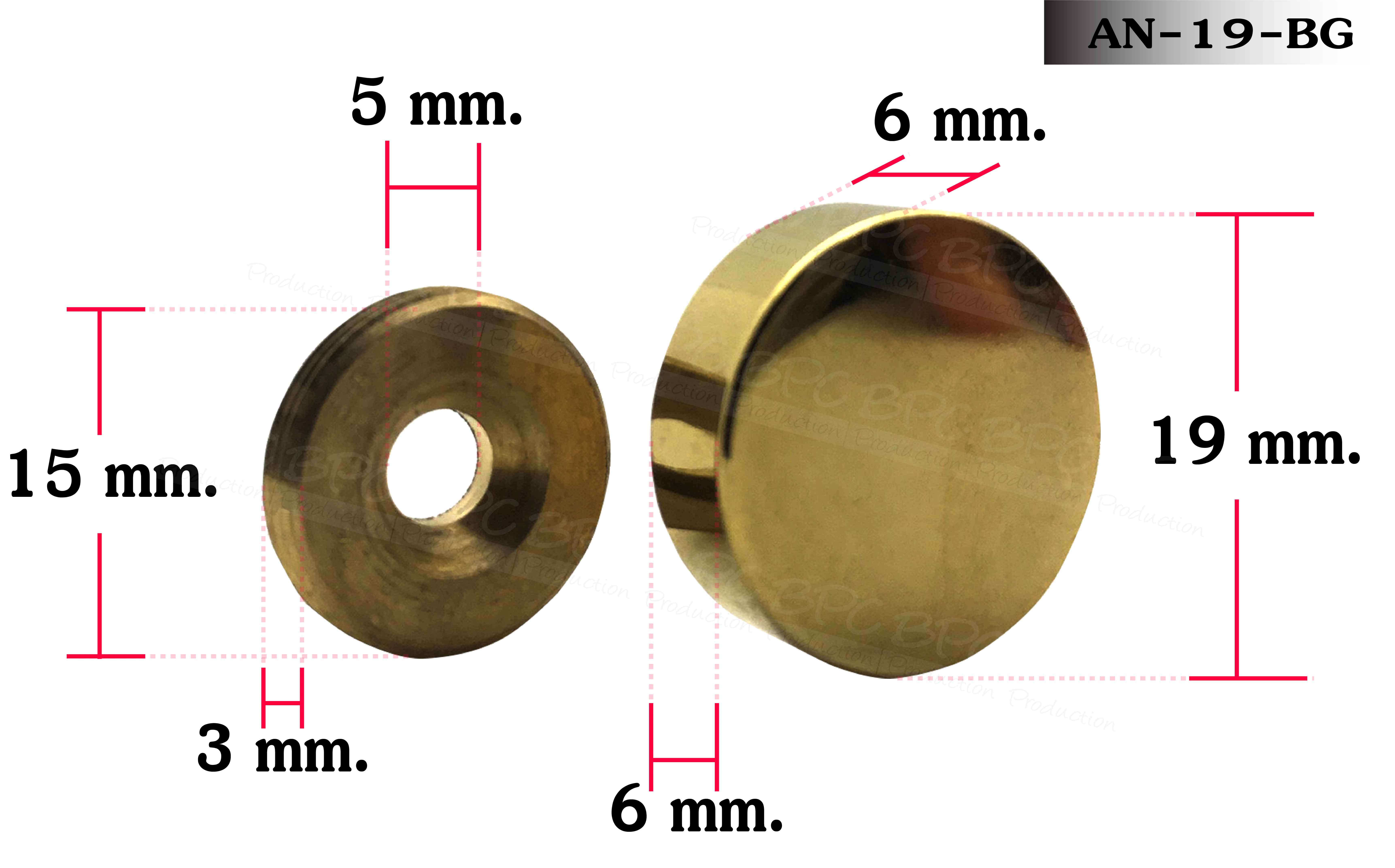 Nut bolt 19 mm Polished Gold ( Stainless )