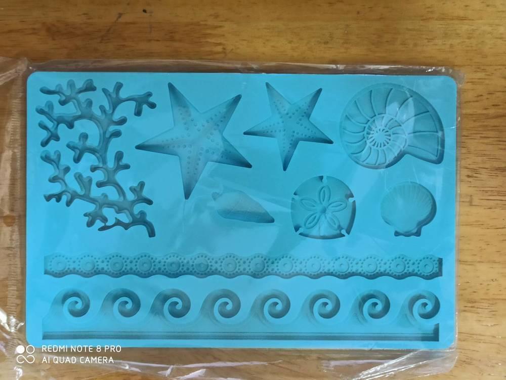 ซิลิโคนโมลรูปเปลือกหอยและปะการัง