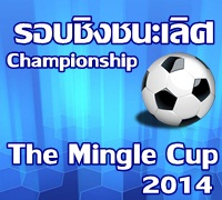 Championship of The Mingle Cup 2014