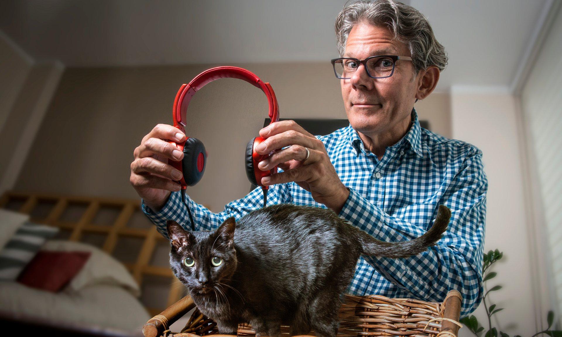 """วันที่ 22 เดือน 2 """"วันแห่งแมว"""" ญี่ปุ่นวางจำหน่ายอัลบั้ม 『ねこのための音楽 ~ Music For Cats』"""