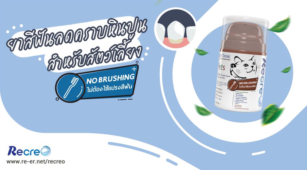 รีวิว Recreo ยาสีฟันสำหรับสุนัขและแมว ไม่ต้องใช้แปรงสีฟัน ช่วยลดคราบหินปูน เหงือกอักเสบ ลดกลิ่นปาก ด้วยสารพรีไบโอติก จากสมุนไพรธรรมชาติ