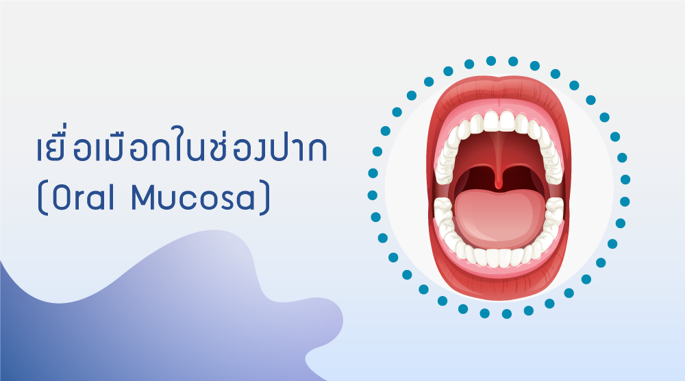 Oral Mucosa Function and Oral/ Dental Health Care