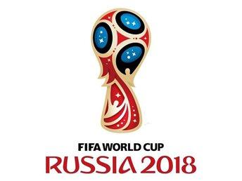 สรุปตารางคะแนนฟุตบอลโลก2018  รอบ 16 ทีมใครรอดใครร่วงมาดูกัน!