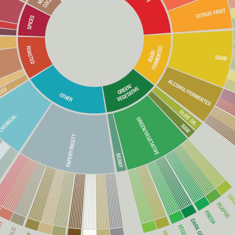 คำแปลและความหมาย Coffee Taster's Flavor Wheel