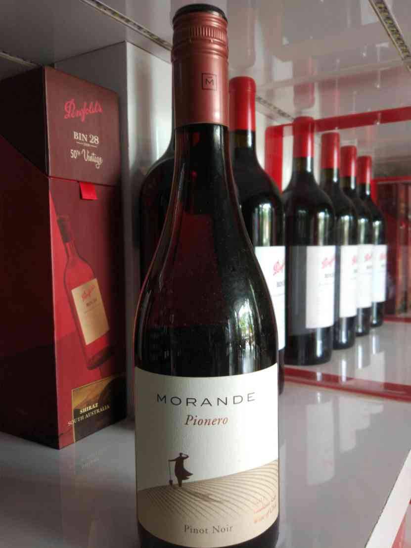 Morande Pionero Pinot Noir
