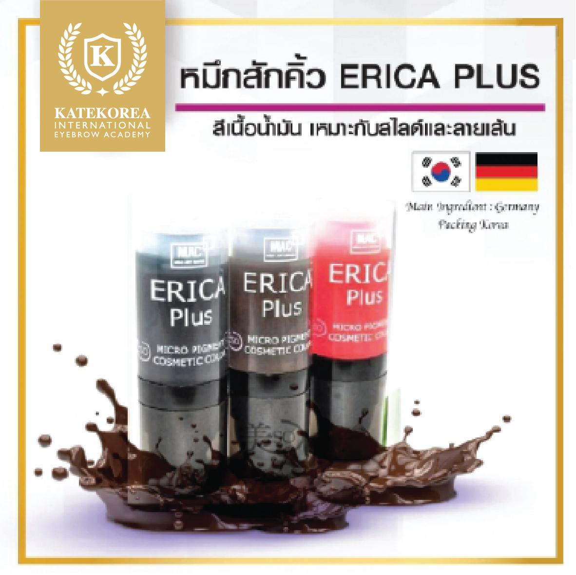 สีสัก ERICA Plus