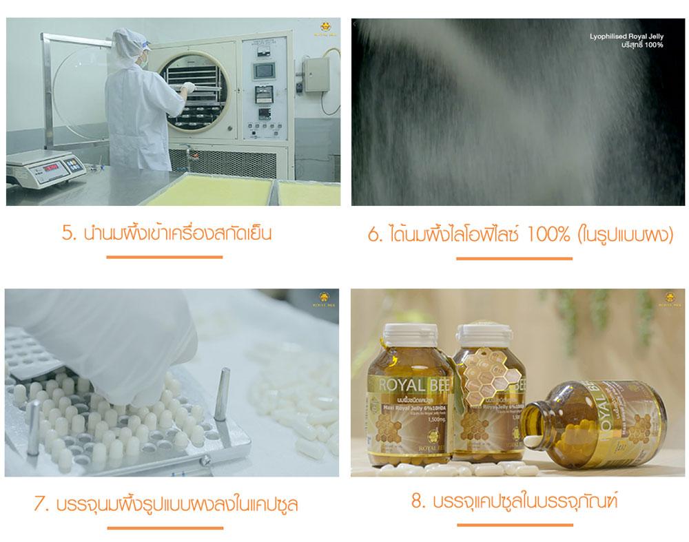 ขั้นตอนการผลิตนมผึ้งรอยัลบี