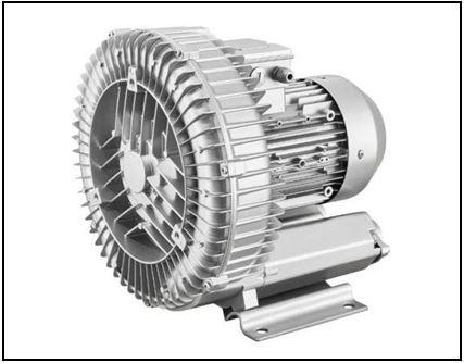 Ring blower vacuum & pressure pumps
