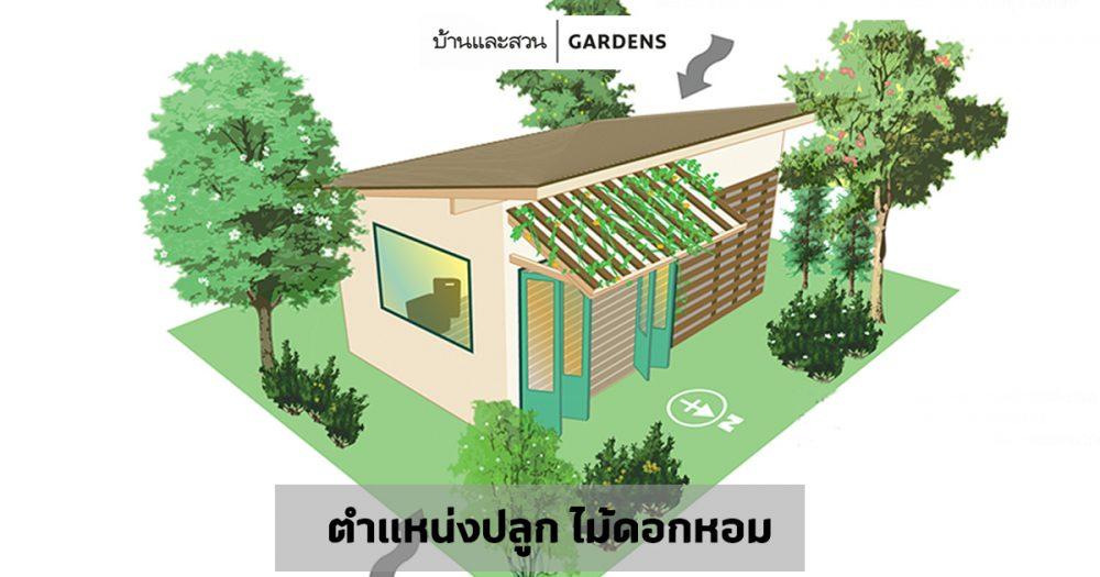 จัดสวนด้วยไม้ดอกหอม รู้ทิศรู้มุมมีสวนหอมทั้งปี