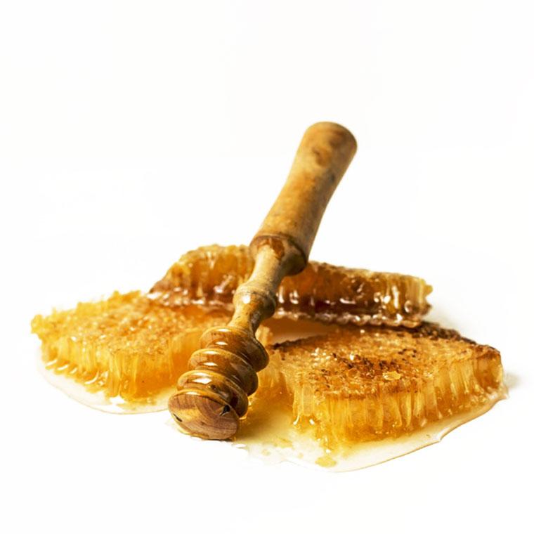 น้ำผึ้ง ( honey bee)