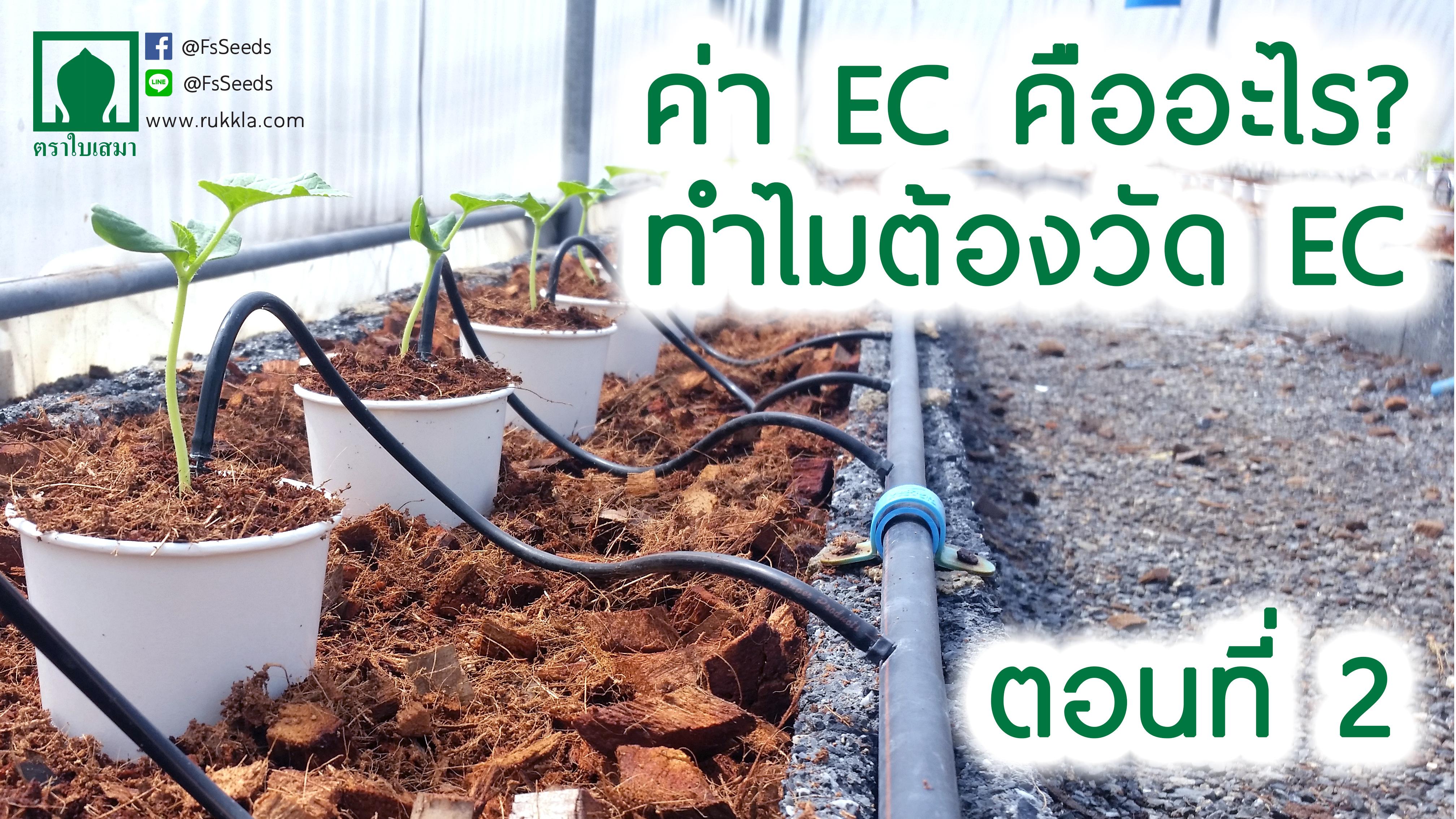 ค่า EC คืออะไร ตอนที่2 (จบ)