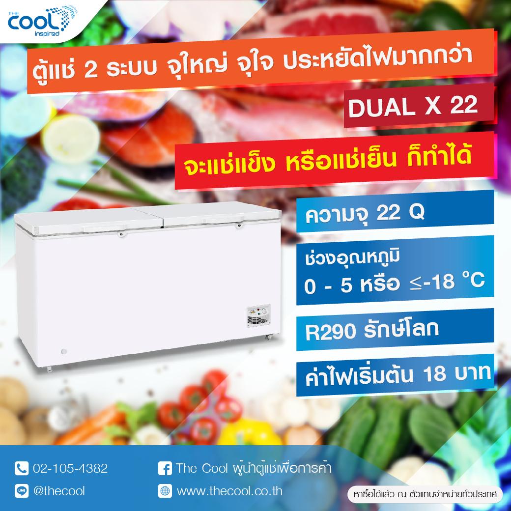 The Cool ตู้แช่ฝาทึบ 2 ระบบ รุ่น Dual X22 ความจุ 21.8 คิว