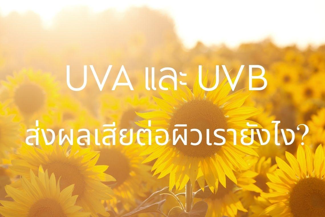 รังสี UVA และ UVB ส่งผลเสียต่อผิวเรายังไง