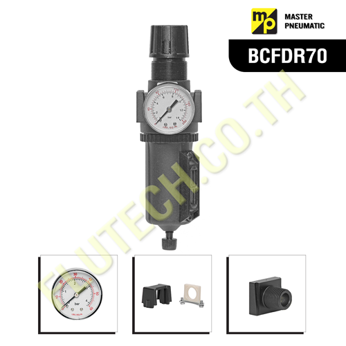 BCFDR70 - Integral Filter and Regulator