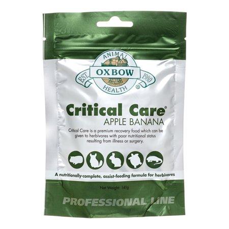 Oxbow Critical Care 36 กรัม อาหารสัตว์ป่วย กระต่าย แกสบี้ ชินชิล่า(copy)