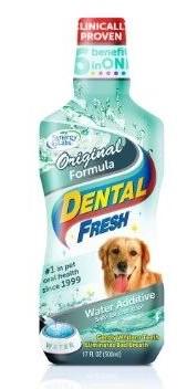Dental Fresh เดนทัล เฟรช ขนาด 16 oz.
