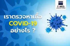 เราตรวจหาเชื้อ COVID-19 อย่างไร (Web)