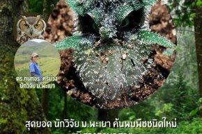 """สุดยอด นักวิจัยคณะเกษตรศาสตร์ฯ ม.พะเยา ค้นพบพืชชนิดใหม่ """"พิศวงตานกฮูก"""""""