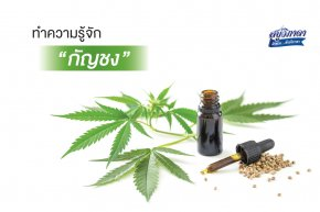 Get to know the hemp in cosmetics