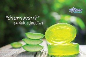 Aloe Vera Highlights in herbal soaps