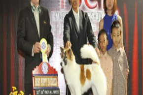 FBCT Championship Show 3/2012