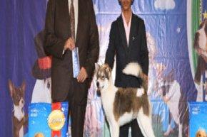 The Mall Championship Dog Show 4/2012