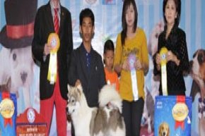 Champion Of Champions Dog Show 2013