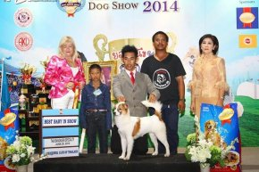 Thailand International Dog Show 2014