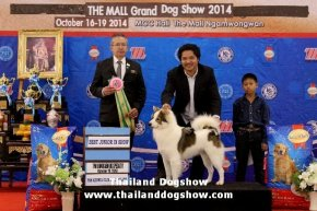 SmartHeart Presents The Mall Grand Dog Show 2014