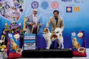 SmartHeart presents Thailand International Dog Show 2015