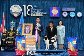 SmartHeart presents Thailand International Dog Show 2019