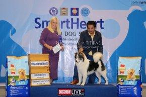 SmartHeart Grand Dog Show 2019