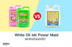 ข้อแตกต่างระหว่าง White  Oil และ Power Maid