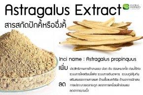 สารสกัด Astragalus Extract