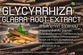 Glycyrrhiza Glabra Root Extract : สารสกัดจาก รากชะเอม