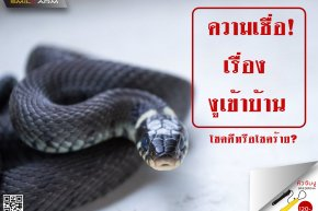 ความเชื่อเรื่องงูเข้าบ้าน