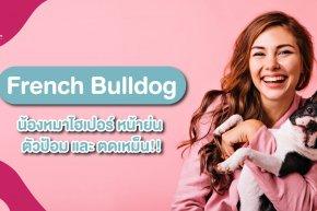 เฟรนช์ บูลด็อก (French Bulldog)