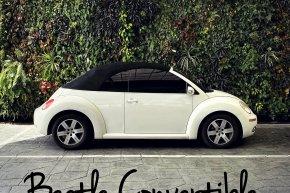 ให้เช่ารถ Beetle เปิดประทุน ให้เช่ารถบีทเทิ้ล รถน่ารัก