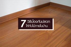 7 วิธีป้องกันปลวกให้กับไม้ภายในบ้าน